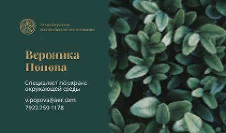 Green Plant Leaves Business card – шаблон для дизайна