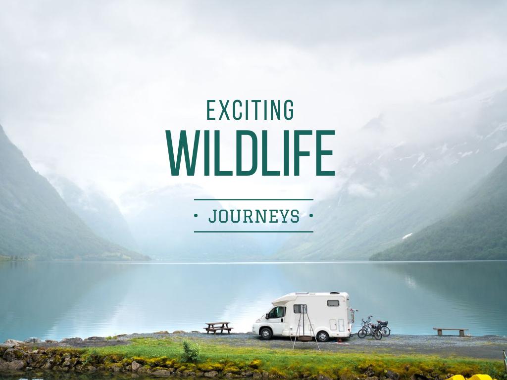Exciting wildlife journeys Ad — Crea un design