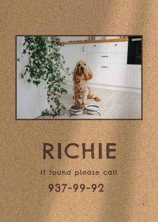 Lost Dog information with cute pet Flayer – шаблон для дизайну