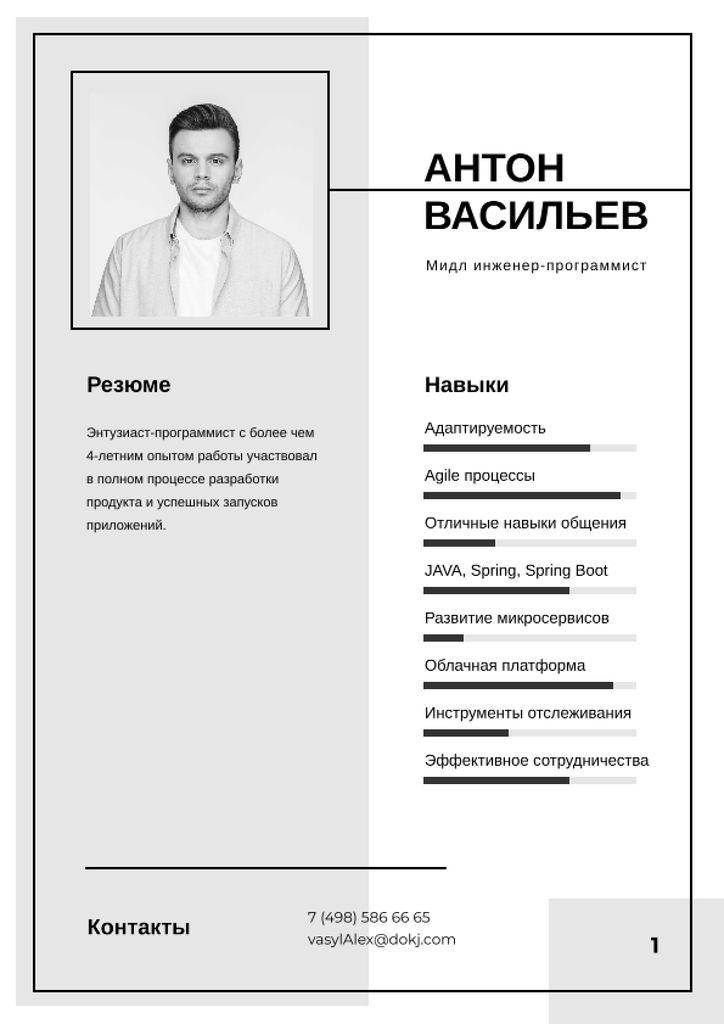 Professional Software Engineer profile Resume – шаблон для дизайна