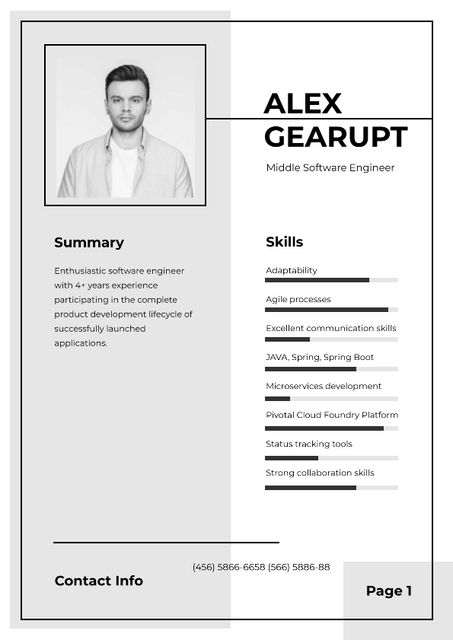 Professional Software Engineer profile Resumeデザインテンプレート