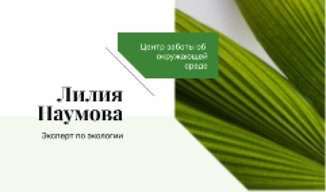 Green Plant Leaves Frame Business card – шаблон для дизайна